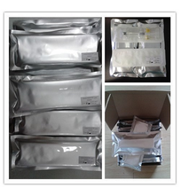 high quality hyaluronic acid filler