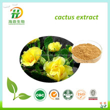 Herb Plant Extractions Cactus Leaf Extract /Opuntia Extract