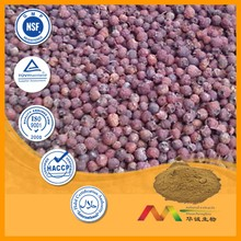 NSF-GMP Supplier provide health products Cluster Mallow Extract powder