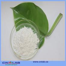 compellent quality now stevia powder