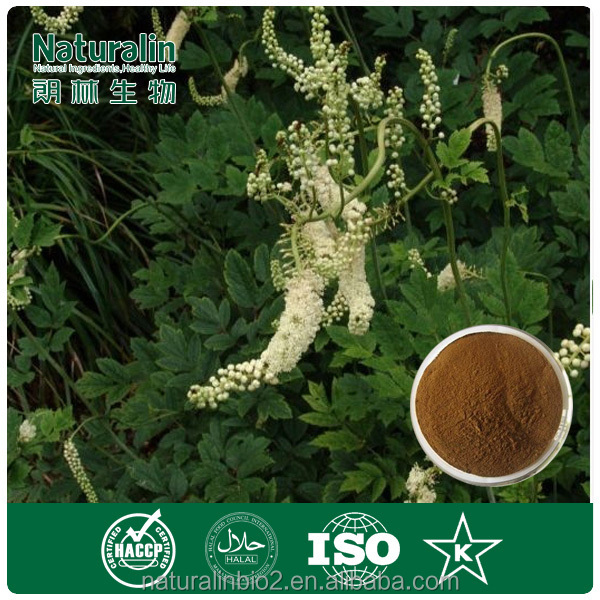 High Quality with Good Price Black Cohosh Root Extract