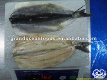 Mariscos congelados atlántico arenque filete camote IQF