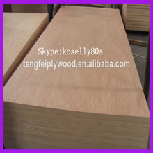 okume/bintangor/birch/hardwood/pine/ poplar raw plywood price