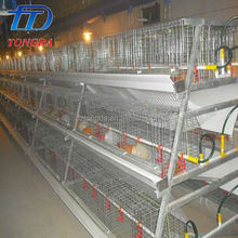 Plastic duck egg incubator and hatcher in united states made in China