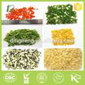 Légumes déshydratés de toute sorte de légumes secs