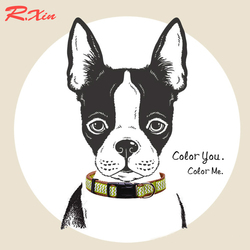 Dog Collars Nylon Dog Cat Puppy Collar Rhinestone pendant pet