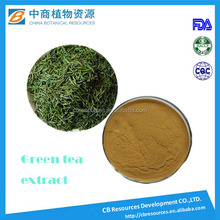 Hot sale Hangover and protect liver Green Tea Extract powder/ Green Tea Powder/ green tea extract