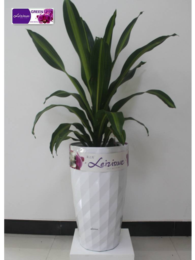 Hg-3501 grande vaso de planta& <span class=keywords><strong>vasos</strong></span> de plástico& vaso de planta& auto- rega de flores e po