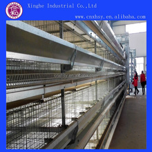 Units Battery Layer Cages for Sale