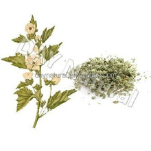 Marshmallow Leaf free sample