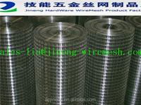 ss304/galvanized welded wire mesh