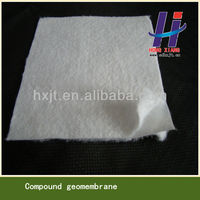 apex 1000 geomembrane composite geomembrane for landfll