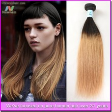 5a human virgin remy two tone hair extension hair extensions ombre color hair extension