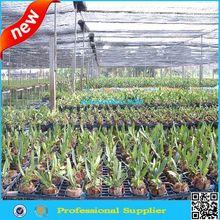 Agricultura compensação sombra para floricultura
