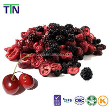 TTN wholesale fruit importers freeze dried cherries