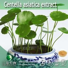 3W Sale centella asiatica extract ,10%- 80% Triterpenes ,Madecassoside 90%-95%,Asiaticoside 40%-95%
