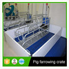Stainless steel pipe and PVC board farrowing stall for pig