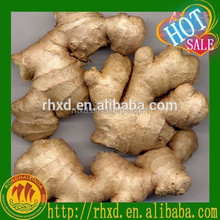 best quality air dry ginger for sale
