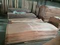 Natural 4 * 8 0.3 mm madera cara / back okoume chapa para madera contrachapada y la puerta cara