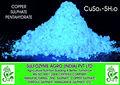 fábrica de venta caliente de alta pureza del sulfato de cobre precio competitivo