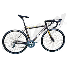 700c road bike fixed gear bike/fixie bike, fixed gear bicycle OEM available