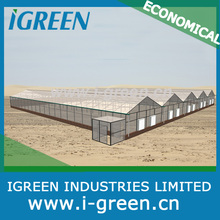 Economical polycarbonate sheet greenhouse/Fiber glass greenhouse/Cut flower greenhouse/Seeding greenhouse