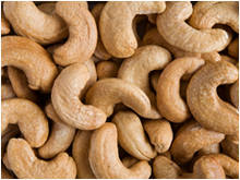 Best Quality Cashew Nuts from Germany