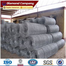 HOT SELLING!!!Chicken wire mesh / gabion cages / bird cage wire mesh materials/Galvanized Gabion Mesh