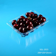disposable clear PET plastic vegetable fruit tray