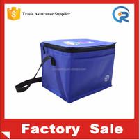 Zhejiang Factory make mini size waterproof insulated freezer shopping bag/portable freezer bag