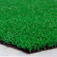 New Design Widely Used Evergreen Synthetic Grass