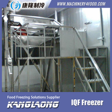 2000Kg/H Green Peas fruit and vegetable iqf freezer