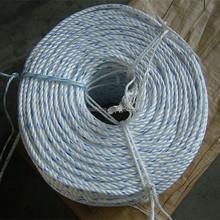 Todos os tipos de fios monofilamento / danline / multifilament / filme dividido corda PP