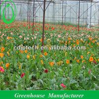 Hot Sale Farm Green House