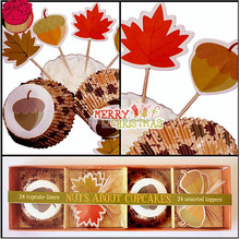 Nuts About Cupcakers Cupcake Liners and Toppers Set Festival Cupcake Case