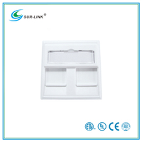 2 Port 45*45mm Adapter for French type Faceplate