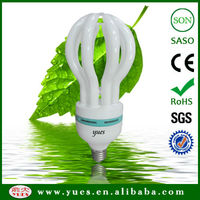 17mm tube_ BV_SGS proved, hot sell in Iraq and other middle east country_ 105W, lotus energy save cfl lamp made in china