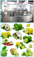 lime juice and milk production line/small coconut processing line