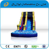 New Type Amusement inflatable water slide/giant inflatable water slide