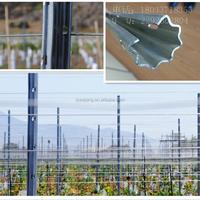 Metal trellis grape stakes galvanized vineyard post