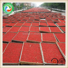 Excellent quality best selling canned pears price dried goji berry