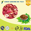 China Supplier Healthcare Product Control Weight Hawthorn Leaf Extract