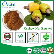 Pure Natural Cashew Nut Extract