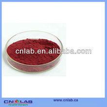 ISO&GMP Manufactory Supply Organic Red Yeast Rice Extract Powder