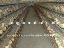 el control automático de la batería de pollos de engorde jaula del pollo