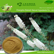Healthcare Product Black Cohosh Extract