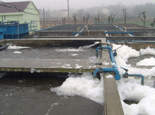 Roots Type Sewage Treatment Air Blowers / Wastewater Aerator