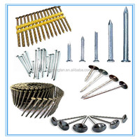 Polished Galvanized Common Nail Iron Nail Factory