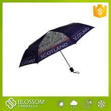 2015 New design 8 panels fashion London style printing umbrella