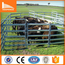 China high quality 6 bars portable cattle yard panel fence/ cattle yard panels 6 rail/ cattle yard panel with pins